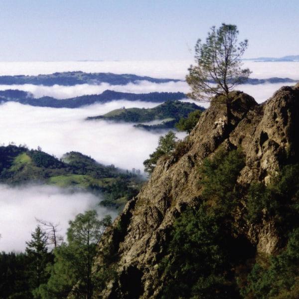 Summit Napa's Highest Peak