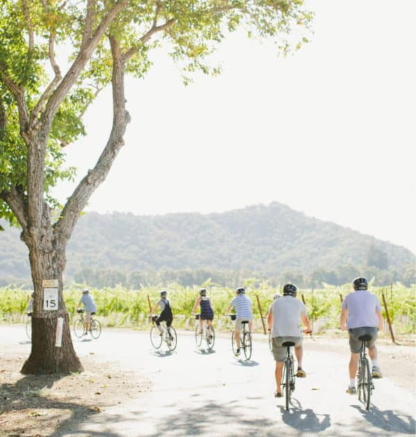 A bike tour group of eight rides away from the camera, rounding a corner on a quiet vineyard-lined road