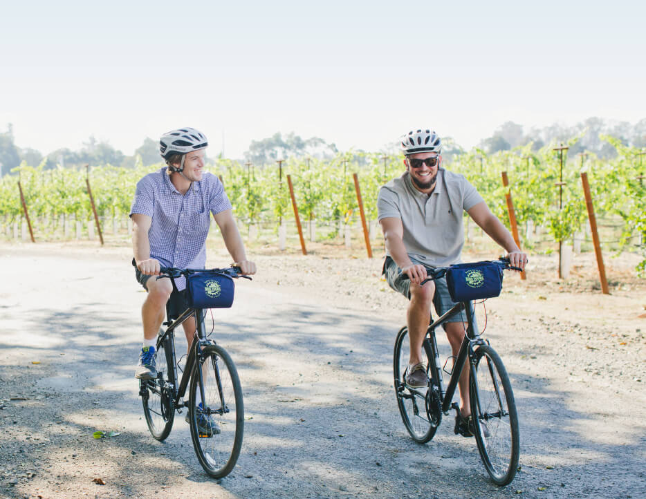 Two men ride bikes side by side down a quiet country road bordered by vineyards
