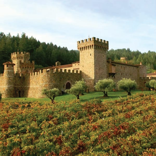 Visit the Castello di Amorosa