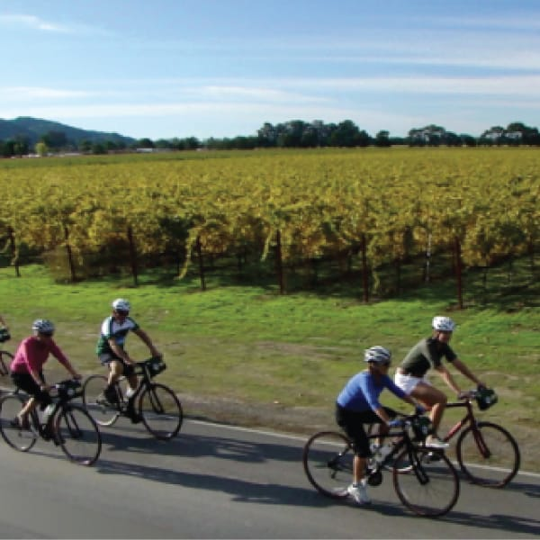 Spend a Day Biking to Wineries