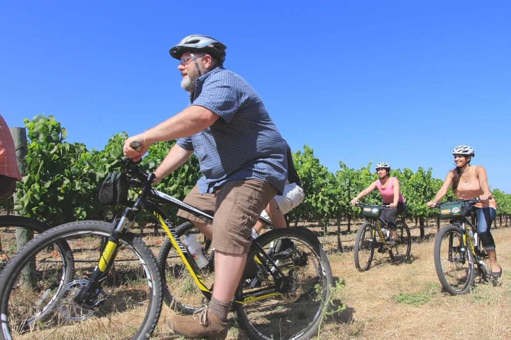 A small group of bikers rides mountain bikes through the vineyards in Napa Valley