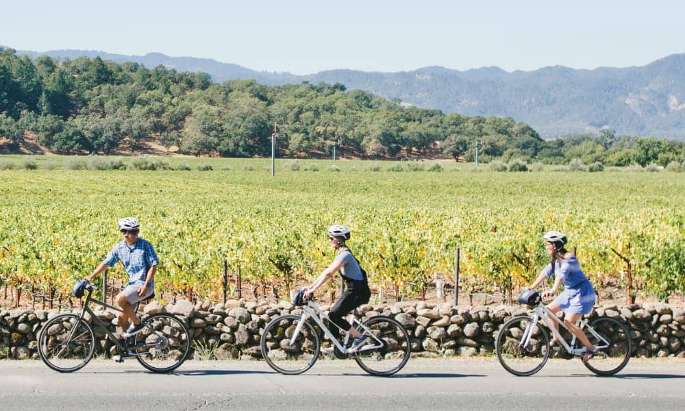 Three casual bike riders ride along the Silverado Trail in Napa Valley with a panoramic view of vineyards in the background