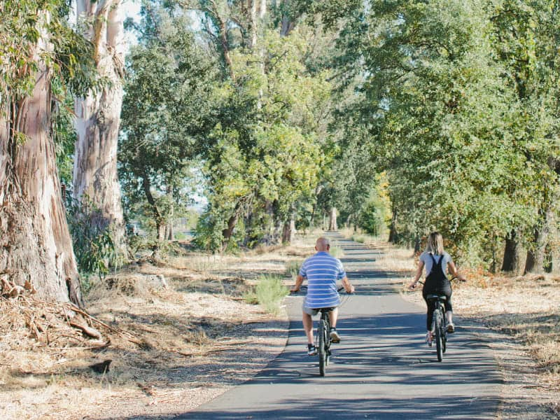 A couple rides side-by-side along a car-free bike path lined with trees in Napa Valley.