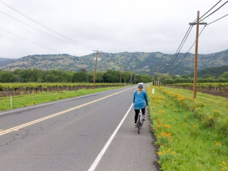 A female bicyclist rides in the bike lane along Yountville Crossroad in Napa Valley.